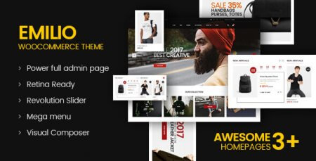 Emilio - Multipurpose Premium Responsive WordPress Theme